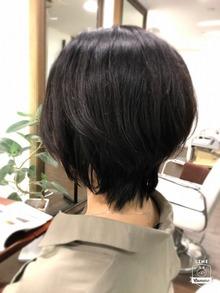 クセ毛のカット
